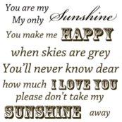 Rrrrrmd_you_are_my_sunshine_shop_thumb