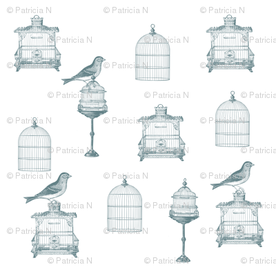 Blue Birds and Bird Cages