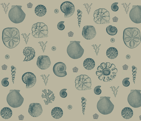 Seashell Collage Sand fabric by peacefuldreams on Spoonflower - custom fabric