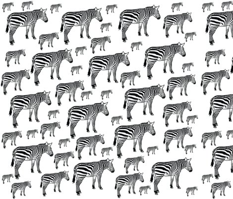 Rmd_zebras_shop_preview