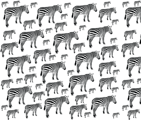 Zebra Variety fabric by peacefuldreams on Spoonflower - custom fabric