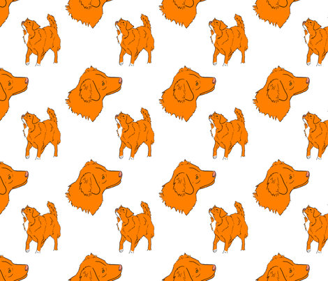Nova scotia duck tolling retriever - white fabric by rusticcorgi on Spoonflower - custom fabric