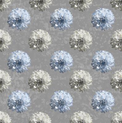 grey daisies