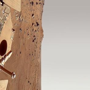 Mars Rover Skirt