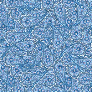 Floral Paisley  pink and blue © 2012 by Jane Walker