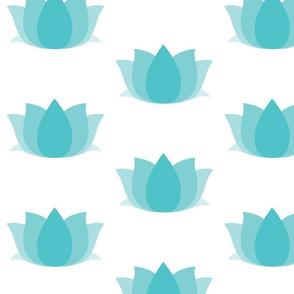 lotus-ed