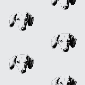 Dachshund Face - small