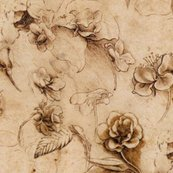 Rrleonardo_da_vinci_-_flower_study2_canvas_shop_thumb
