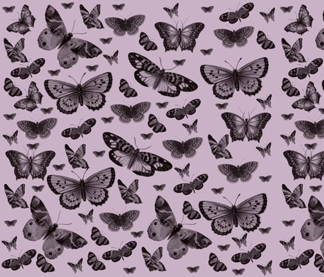 Rmd_butterflies_pretty_pink_shop_preview