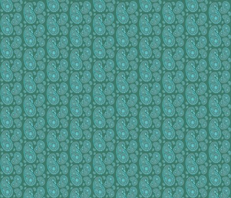 Rrrrrpaisley-aqua_shop_preview