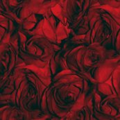 Rrrroses_red_variation_most_likely_to_succeed_shop_thumb