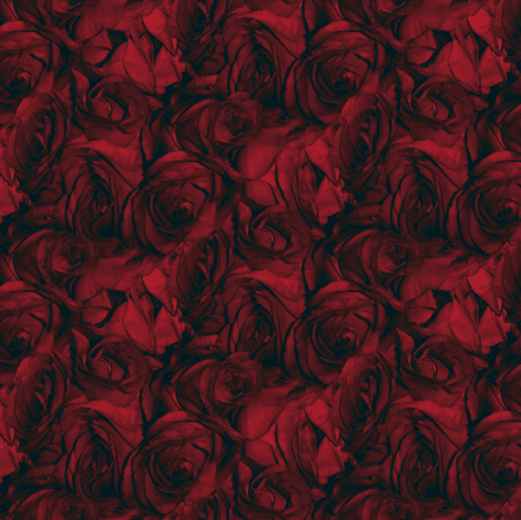 Casanova's Roses fabric by peacoquettedesigns on Spoonflower - custom fabric