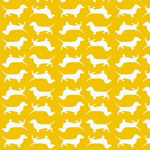 Yellow Doxies