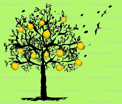 Orange-tree-orchard