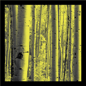 Aspen Forest Pillows