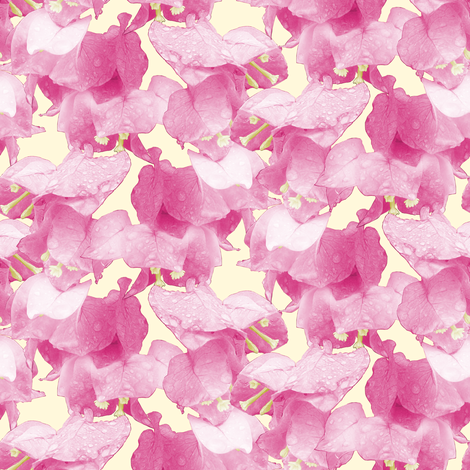 Bougainvillea fabric by pond_ripple on Spoonflower - custom fabric