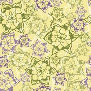 Desert Agave Rosette