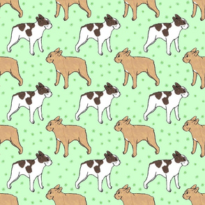French Bulldog toons and stars - green