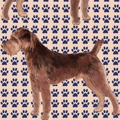 1697295_rwelsh_terrier_shop_thumb