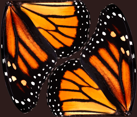 Orange Monarch Butterfly Wings fabric by bonnie_phantasm on Spoonflower - custom fabric
