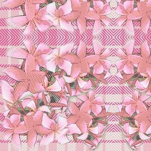 Palaka plumeria pink