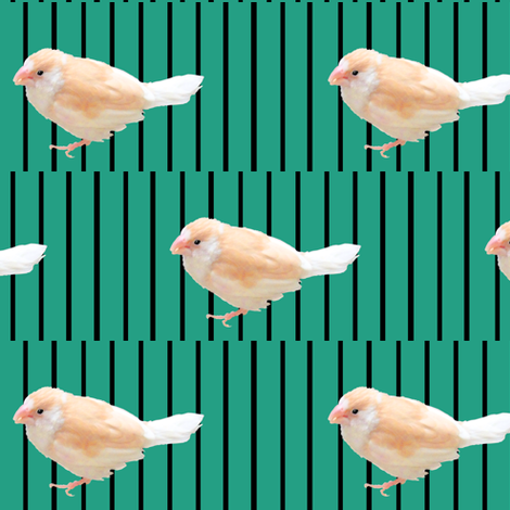 Psychedelic Finch  fabric by pond_ripple on Spoonflower - custom fabric