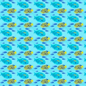 blue_fish_