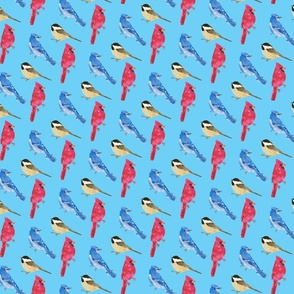 birds_on_blue