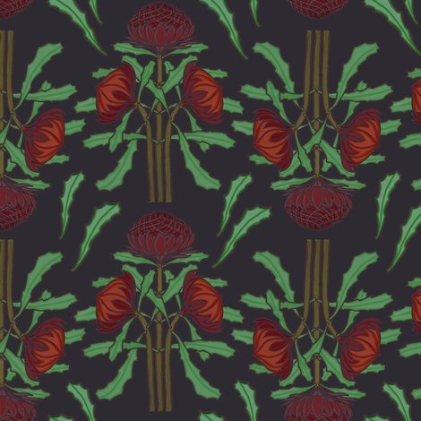 Rrrrrrdark-red-waratahs-on-dark-gray_shop_preview