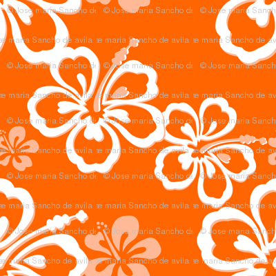 Orange Hawaiian Flowers Pattern