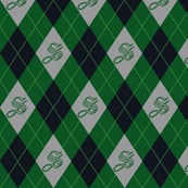 Slytherin House Argyle