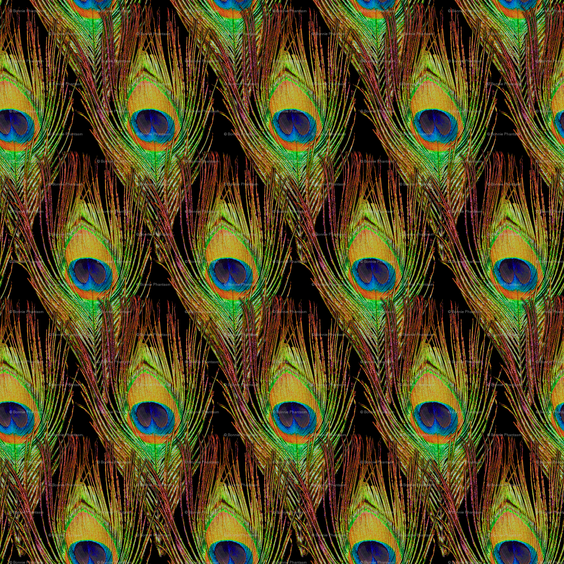 peacock feather wallpaper - DriverLayer Search Engine