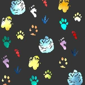 Wild Animals Paw Prints