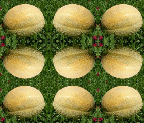 Cantaloupe fabric by carmenscottagecreations on Spoonflower - custom fabric