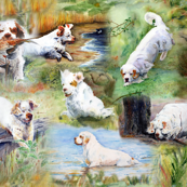 Clumber Spaniels 1 by Jan Irving 
