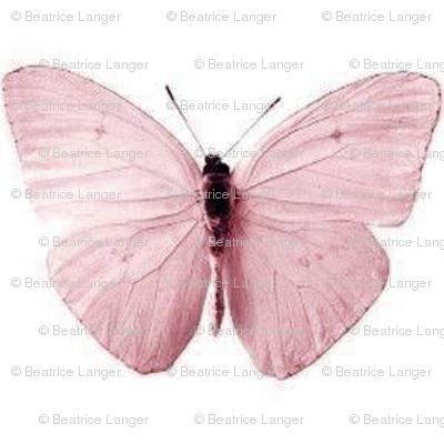 Vintage_Butterfly_altrosa2