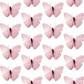 Rrvintage_butterfly_altrosa2_shop_thumb