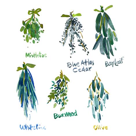 cestlaviv_Gardener  Journal
