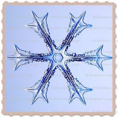 Schnee_3-ed frame