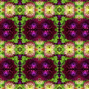 Lime and Magenta Zinnias_1169