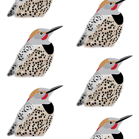 Northern Flicker fabric by owlandchickadee on Spoonflower - custom fabric