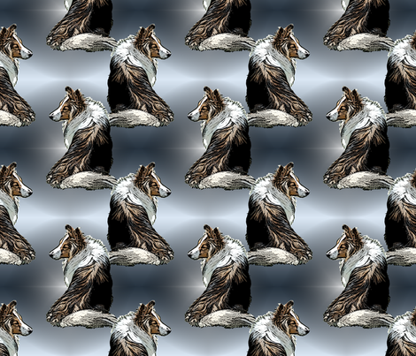 Shelties shine fabric by rusticcorgi on Spoonflower - custom fabric