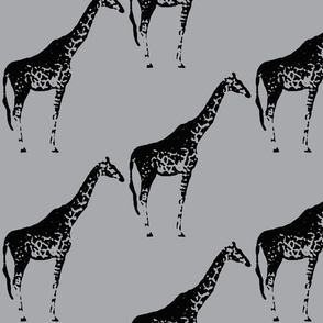 giraffe-gray