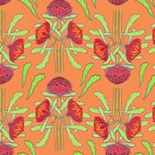 Spring waratahs on apricot