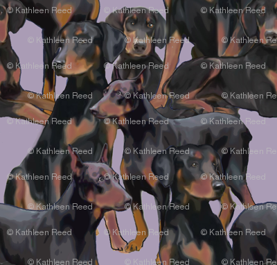 Doberman Mural fabric