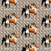 Rrbasenjis3_shop_thumb