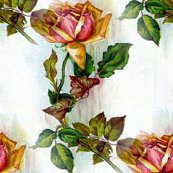 Vintage_rose_001_shop_thumb