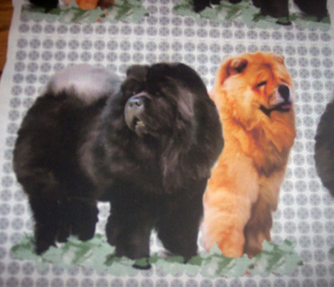 red_and_black_chows