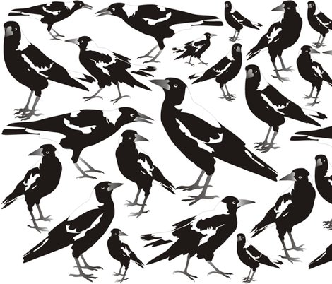 Rmagpies._shop_preview