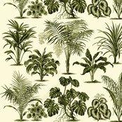 R052723k6-blattpflanzen1_e_shop_thumb
